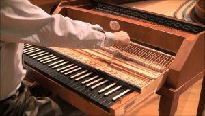 dan organ